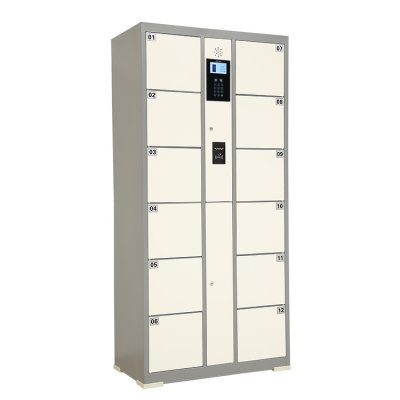 IC card system electronic smart locker /cabinet